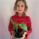 3c-Pamiętamy o pielęgnowaniu roślin.