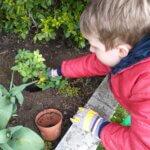 klasa 3c -W Dniu Ziemi sadzimy rośliny
